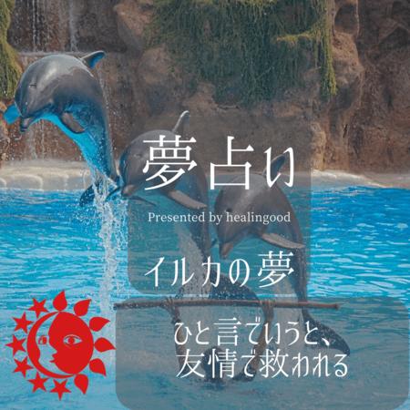 イルカの夢【夢占い一覧表】友情や家族に救われる