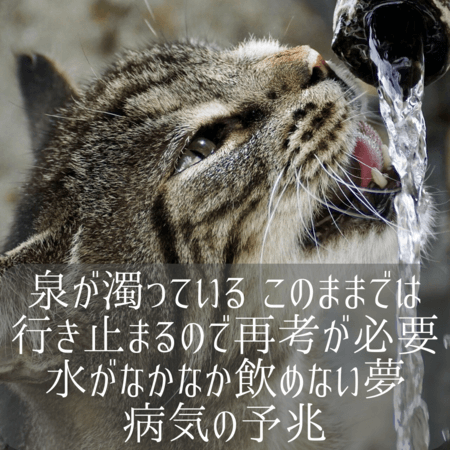 泉の夢【夢占い一覧表】エネルギーの象徴をあらわす