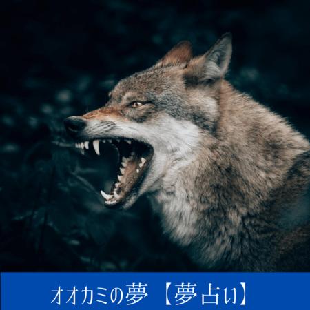 オオカミの夢【夢占い一覧表】危機的状況そのものをあらわす夢
