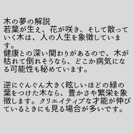 木の夢【夢占い一覧表】人生を象徴