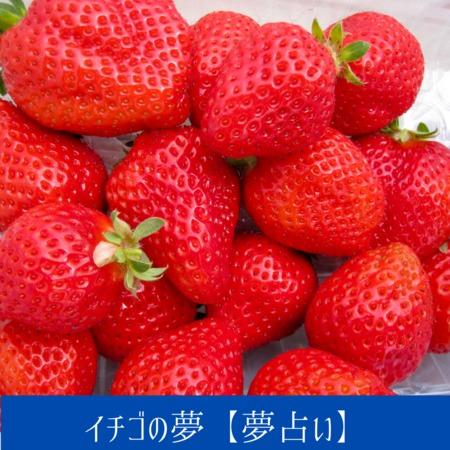 イチゴの夢【夢占い一覧表】新しい恋がはじまろうとしています