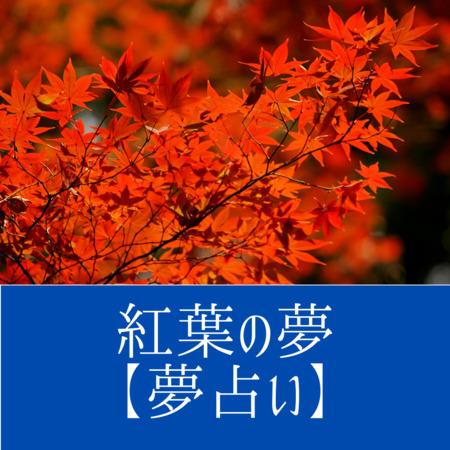 紅葉の夢【夢占い一覧表】生や復活の象徴