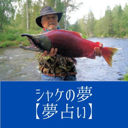 シャケ(鮭)の夢の意味:知恵を意味する、現実で直面している問題解決のヒント