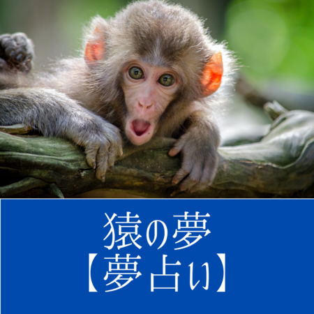 猿の夢の意味:悪知恵やずる賢さの象徴