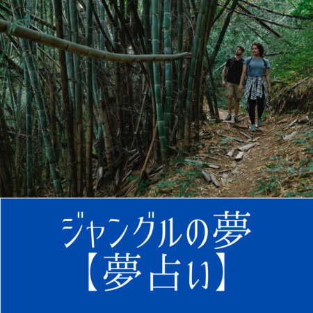 ジャングルの夢の意味:思いがけない障害や危険を意味