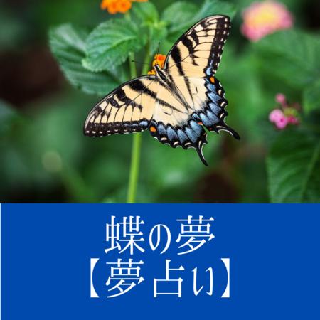 蝶の夢の意味:人生の変化を暗示した夢